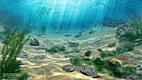reconstruction of silurian ocean life