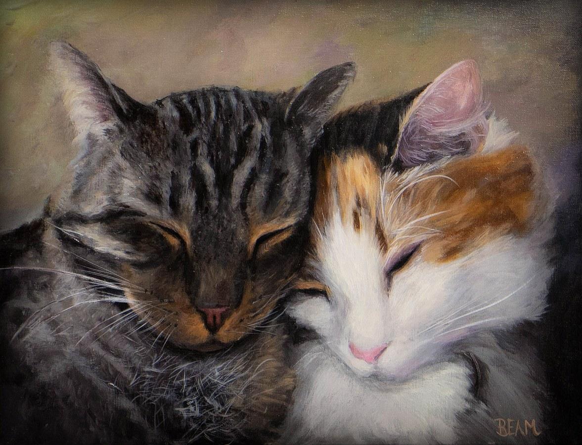 Kittys