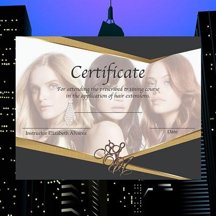 Hair Training Certification Design