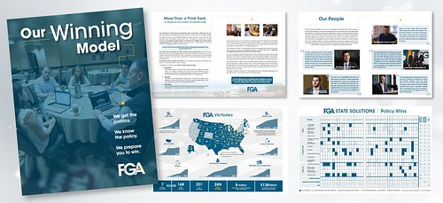 FGA Organizational Explainer booklet