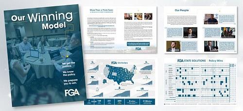 FGA Organizational Explainer booklet