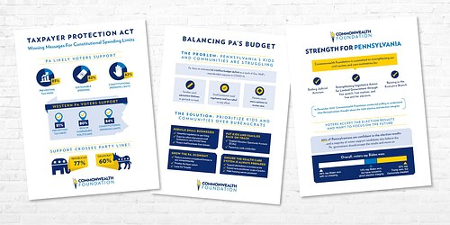 Policy overview one-page fact sheets