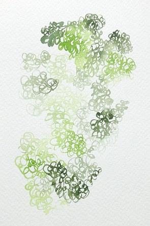 Fern Moss