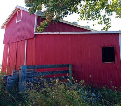 Spoonie Farm