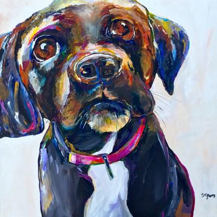 Stella as a Pup