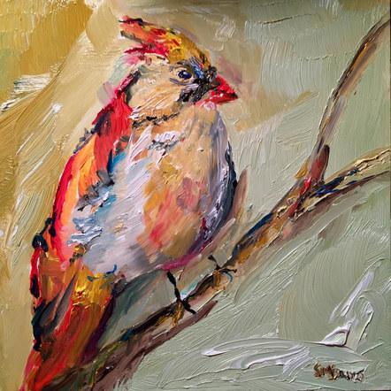 The Reassuring Cardinal