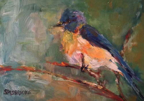 Quintessential Bluebird