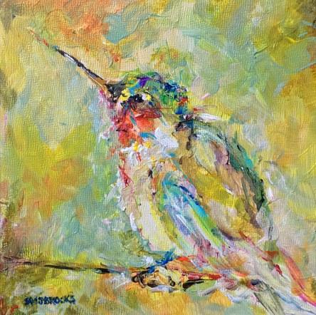 Medley of Hummingbirds