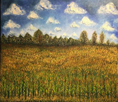 Summer Corn Field