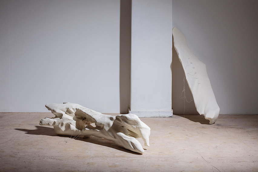 White lump series_ installation view