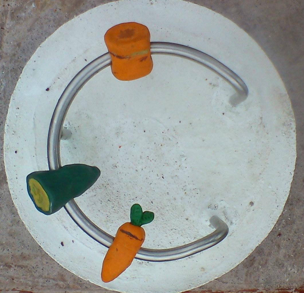 C for Carrot