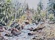 (Ref. W494)  Wild Stream - CHF 430