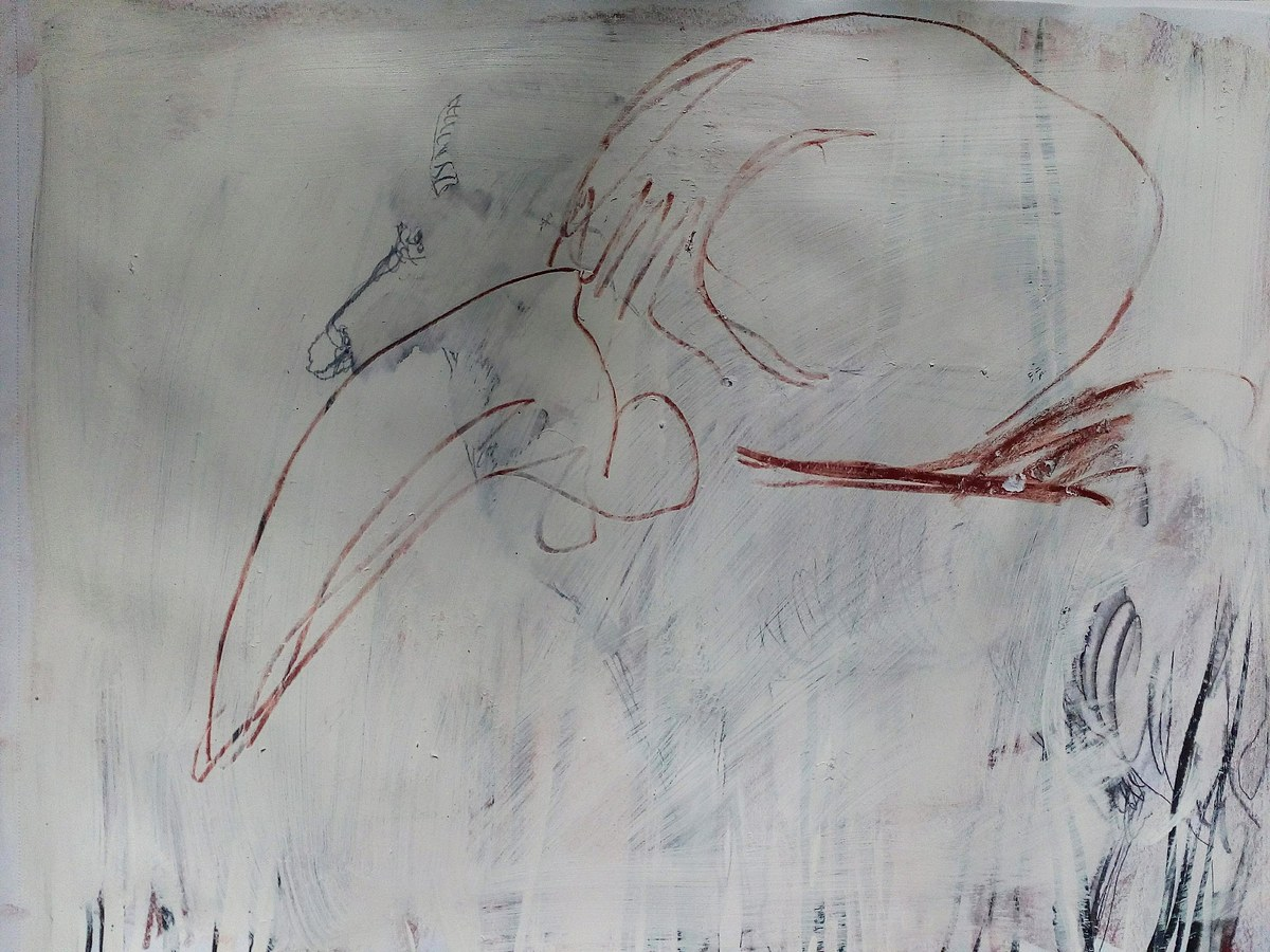 Bird Skull 2
