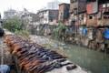 Human Hair, Dharavi Slum, Bombay