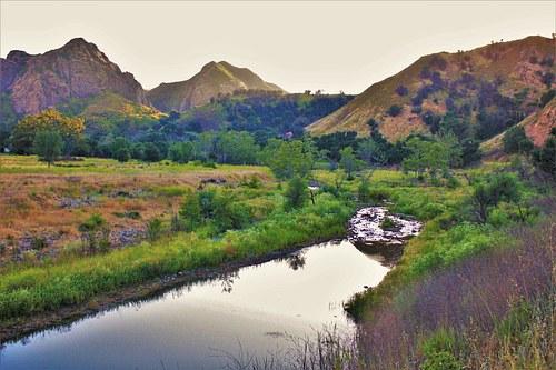 Stream view in Malibu Creek State Park