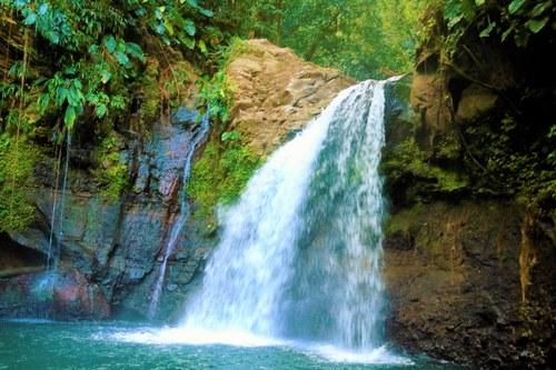 Waterfall Outside Basse-Terre