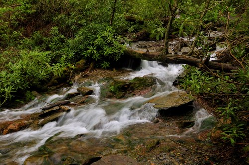 River Flowing Near Mountain Trail in Smoky Mountains