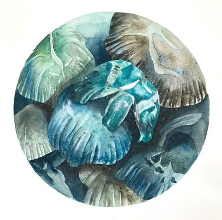 Blue Shrooms