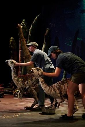 Dinosour petting zoo 2013