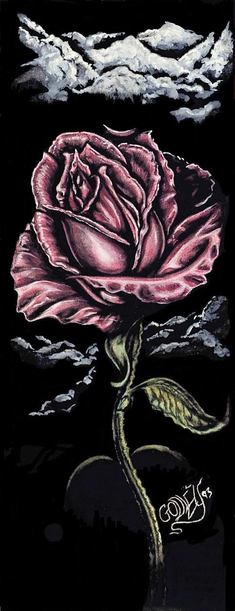 A Pink Rose at Night #2
