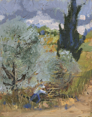 Stormy Work Olive Trees