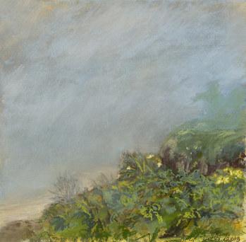 Del Playa Fog II