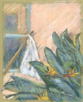 White Flag at Window