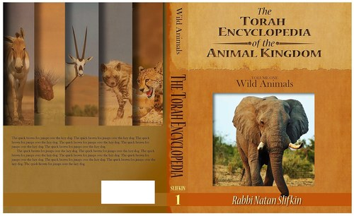 Book Cover Design-Torah Encyclopedia