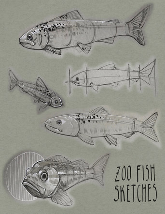 Zoo Fish Sketches