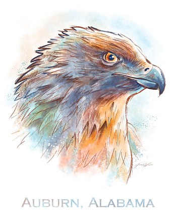 Auburn Eagle