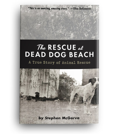 The Rescue at Dead Dog Beach | Front Cover Design 1