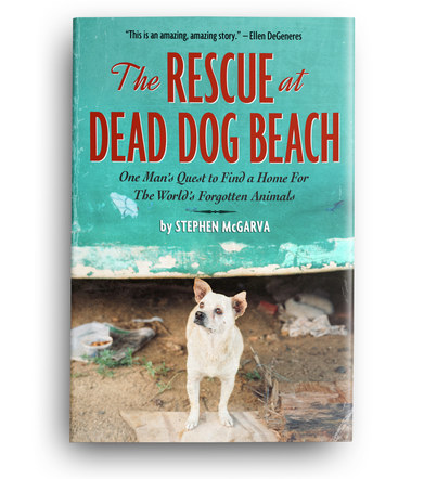 The Rescue at Dead Dog Beach | Front Cover Design 4