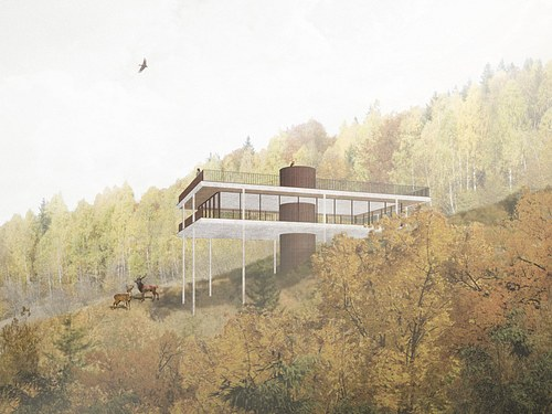The #nature #observatory (PART I)