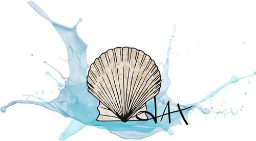 Seashell Splash