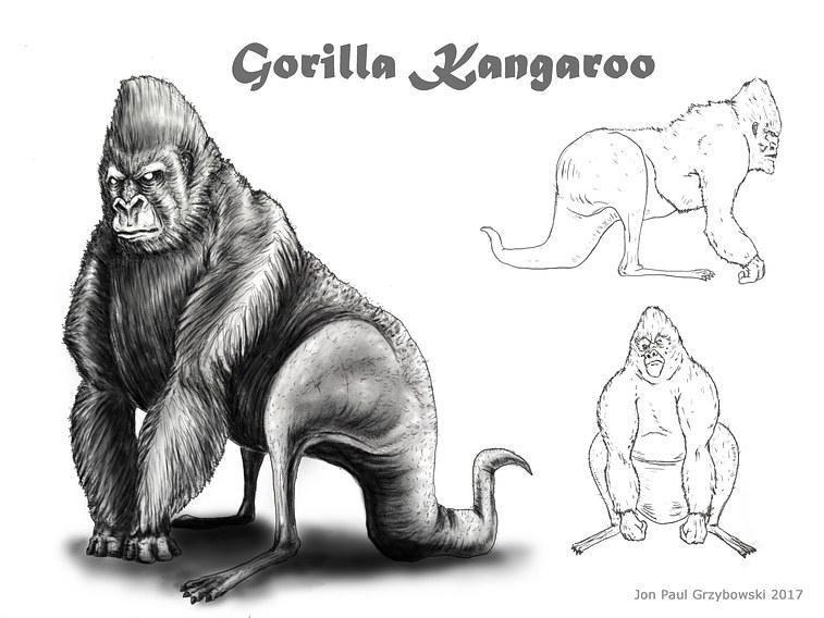 Gorilla Kangaroo